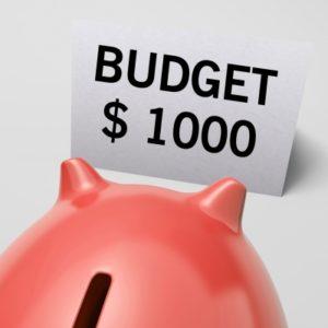 Budget de comptable mlm